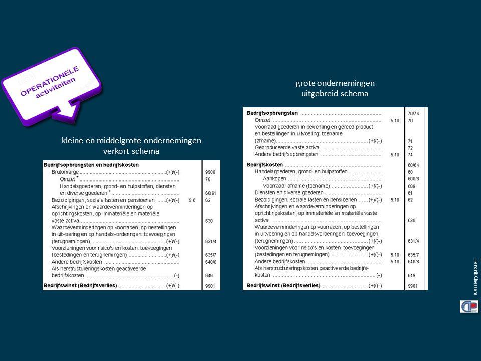 grote ondernemingen uitgebreid schema kleine en middelgrote ondernemingen verkort schema Hendrik Claessens