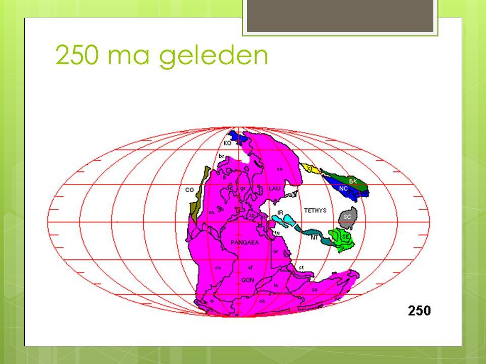 250 ma geleden