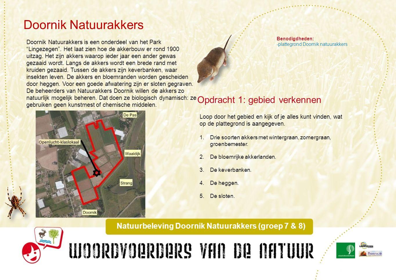 Benodigdheden: - zoekkaart granen - zoekkaart vlinderbloemigen - loep Graanakkers Opdracht 2: Het drieslagstelsel Graan is een grasachtige plant.