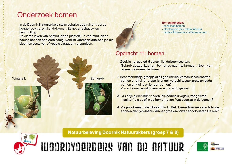 Onderzoek sporen dieren Natuurbeleving Doornik Natuurakkers (groep 7 & 8) 1.Zoek in het onderzoeksgebied zoveel mogelijk sporen van verschillende dieren (minimaal 10).