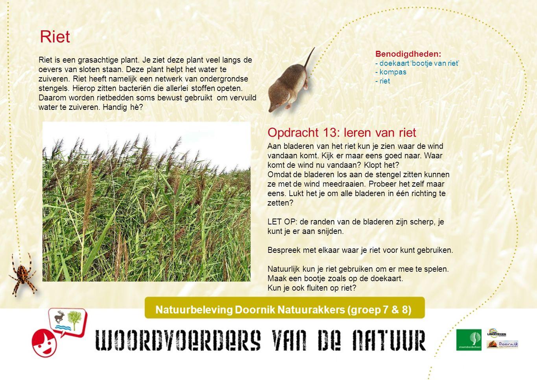 Doekaart : bootje van riet Natuurbeleving Doornik Natuurakkers (groep 7 & 8)