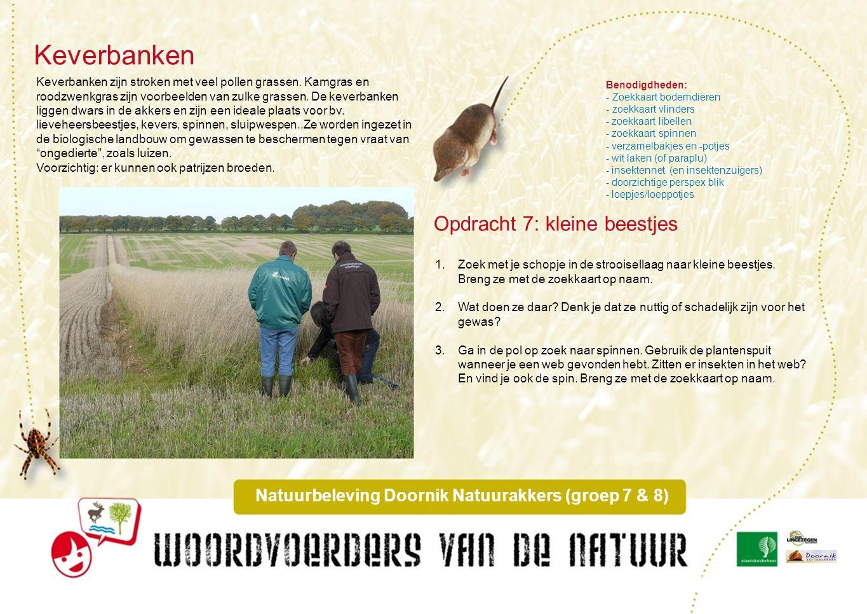 Zegen en waterdiertjes Natuurbeleving Doornik Natuurakkers (groep 7 & 8) Voor een goede waterafvoer zijn er in en om Doornik Natuurakkers sloten gegraven.