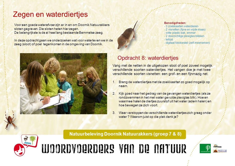Het weer Natuurbeleving Doornik Natuurakkers (groep 7 & 8) Sommige dieren kunnen tegen weer en wind.
