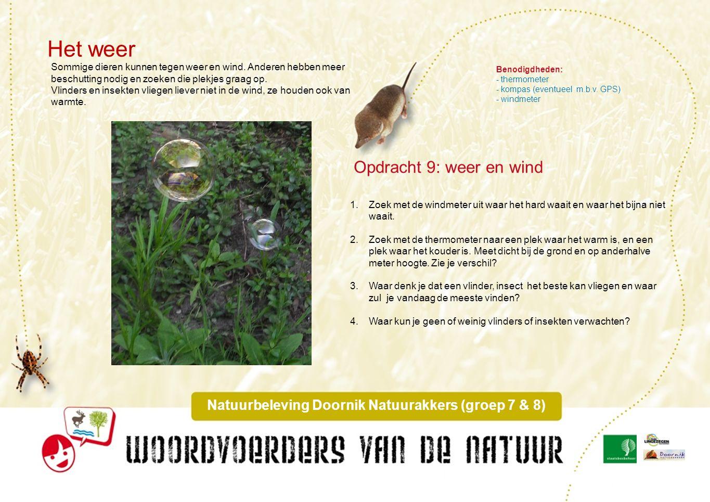 Middeleeuws dijkje Natuurbeleving Doornik Natuurakkers (groep 7 & 8) Jullie hebben gezien wat de belangrijke onderdelen van het park zijn: graanakkers, bloemrijke akkerranden, heggen, keverbanken, zegen (=sloten).
