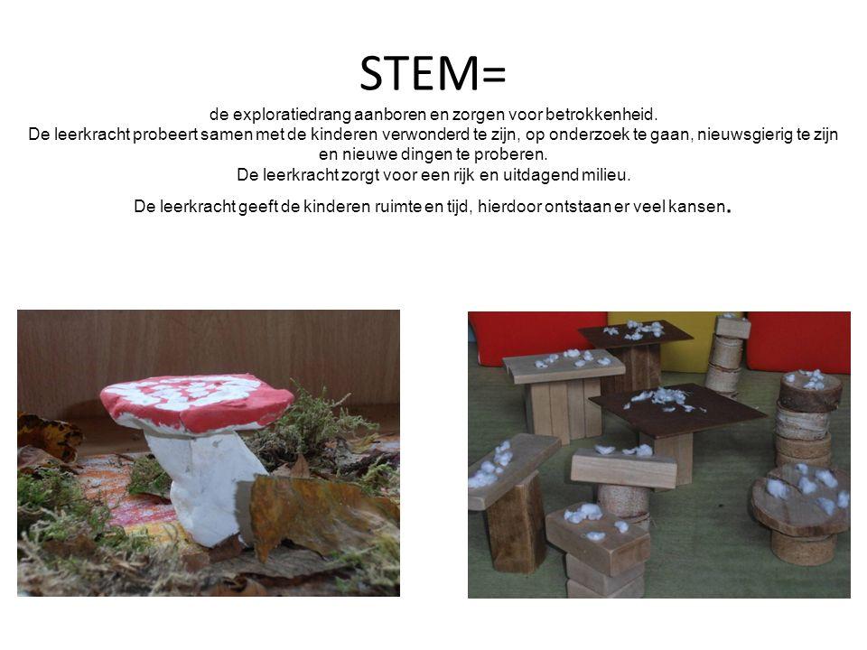 STEM= de exploratiedrang aanboren en zorgen voor betrokkenheid. De leerkracht probeert samen met de kinderen verwonderd te zijn, op onderzoek te gaan,
