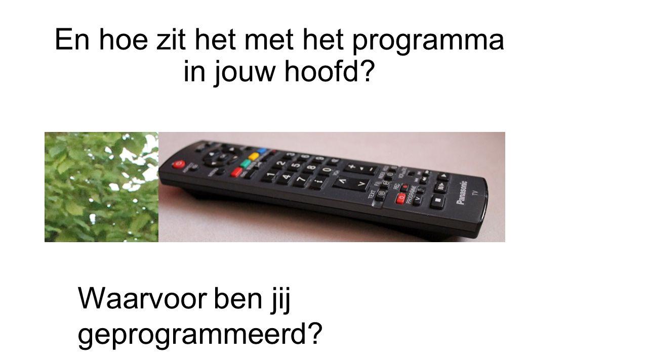 En hoe zit het met het programma in jouw hoofd? Waarvoor ben jij geprogrammeerd?
