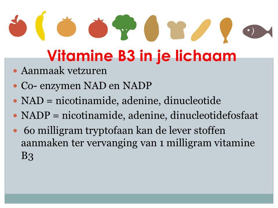 Vitamine B3 in je lichaam Aanmaak vetzuren Co- enzymen NAD en NADP NAD = nicotinamide, adenine, dinucleotide NADP = nicotinamide, adenine, dinucleotid