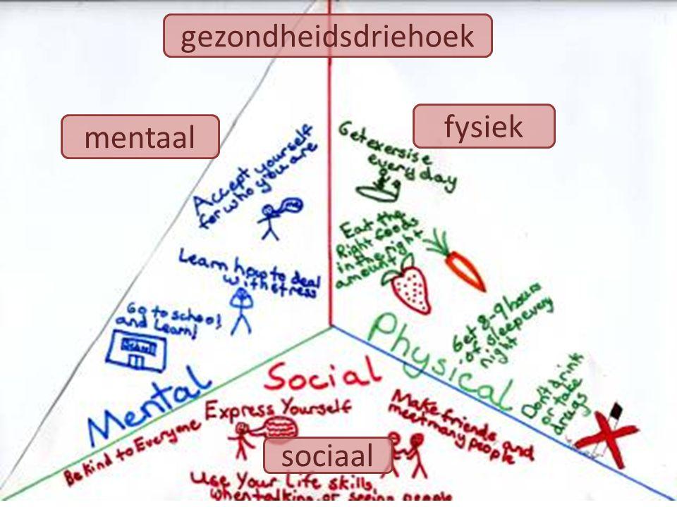 mentaal fysiek sociaal gezondheidsdriehoek