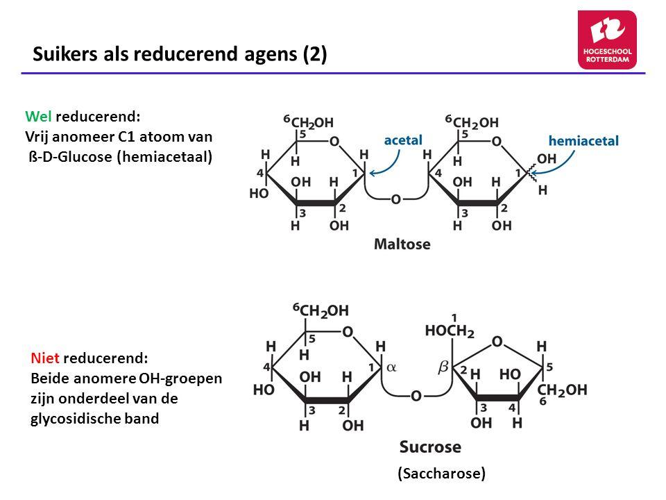 Oligosacchariden: glycoconjugaten Oligosacchariden bestaan uit 3 of meer enkelvoudige suikers die niet vrij als oligosacchariden voorkomen in de cel maar gebonden zijn aan niet- suikermoleculen.