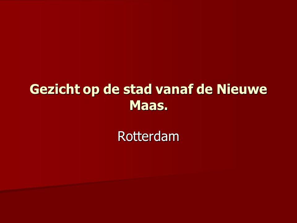 Lieve Pietersz.Verschuier(Rotterdam ca.
