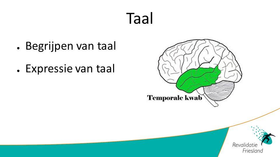 Taal ● Begrijpen van taal ● Expressie van taal