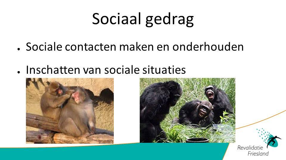 Sociaal gedrag ● Sociale contacten maken en onderhouden ● Inschatten van sociale situaties