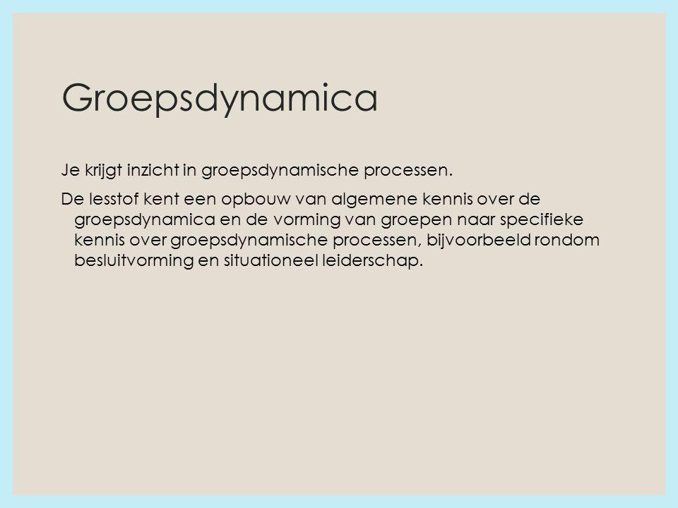 Groepsdynamica Je krijgt inzicht in groepsdynamische processen.