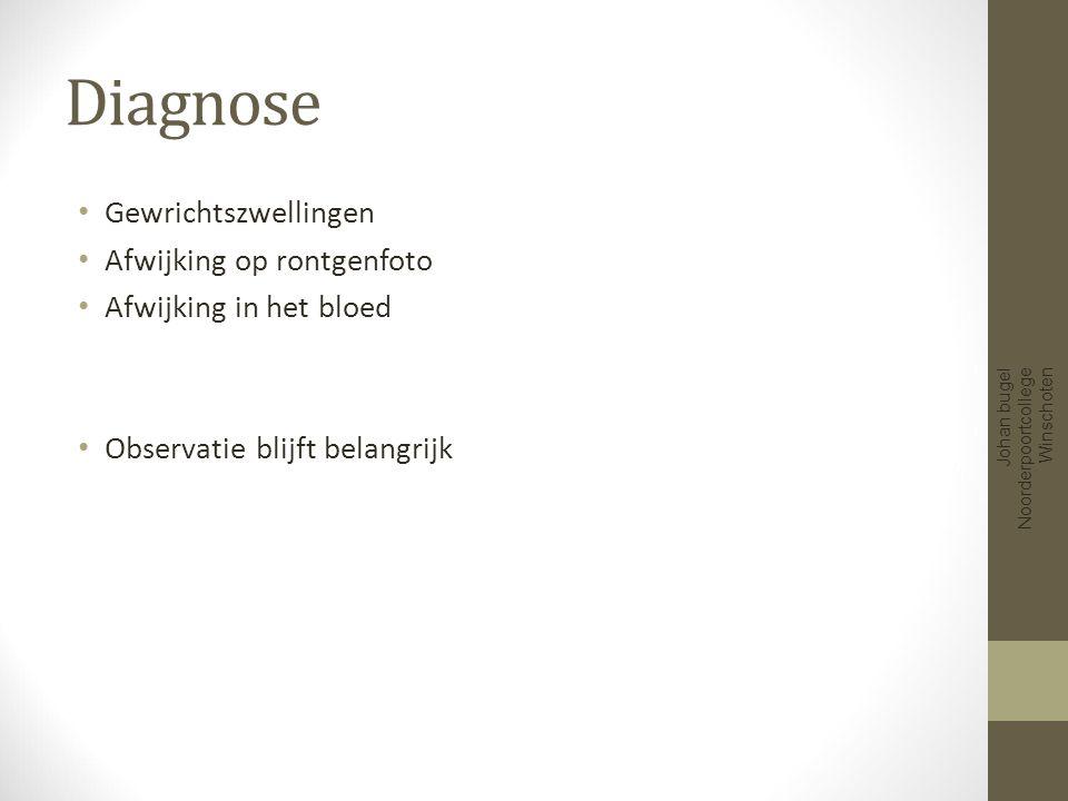 Prevalentie Johan bugel Noorderpoortcollege Winschoten