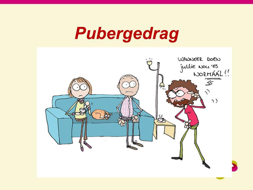 Pubergedrag