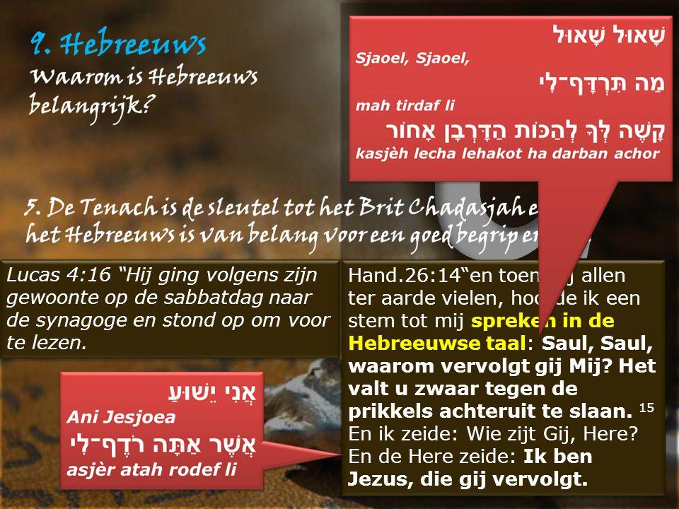 """Lucas 4:16 """"Hij ging volgens zijn gewoonte op de sabbatdag naar de synagoge en stond op om voor te lezen. Hand.26:14""""en toen wij allen ter aarde viele"""