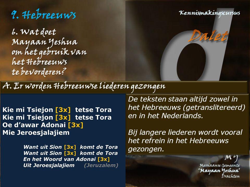 De teksten staan altijd zowel in het Hebreeuws (getranslitereerd) en in het Nederlands. Bij langere liederen wordt vooral het refrein in het Hebreeuws