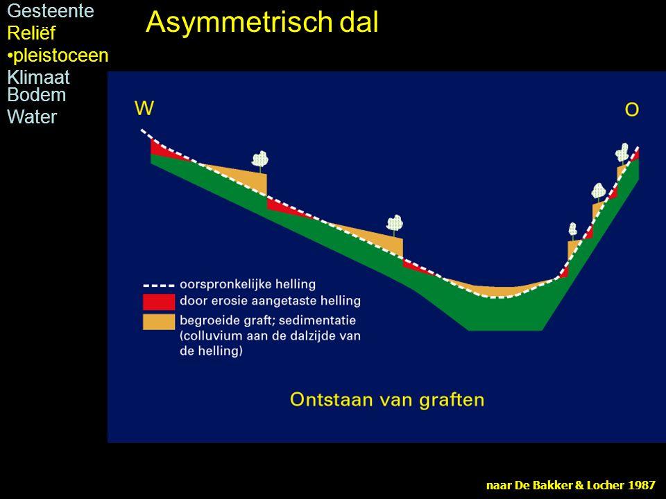 naar De Bakker & Locher 1987 Asymmetrisch dal Gesteente Reliëf pleistoceen Klimaat Bodem Water