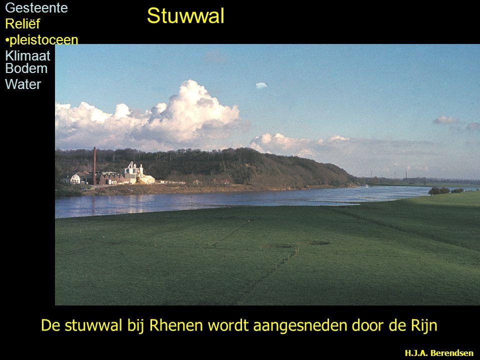 H.J.A. Berendsen De stuwwal bij Rhenen wordt aangesneden door de Rijn Stuwwal Gesteente Reliëf pleistoceen Klimaat Bodem Water