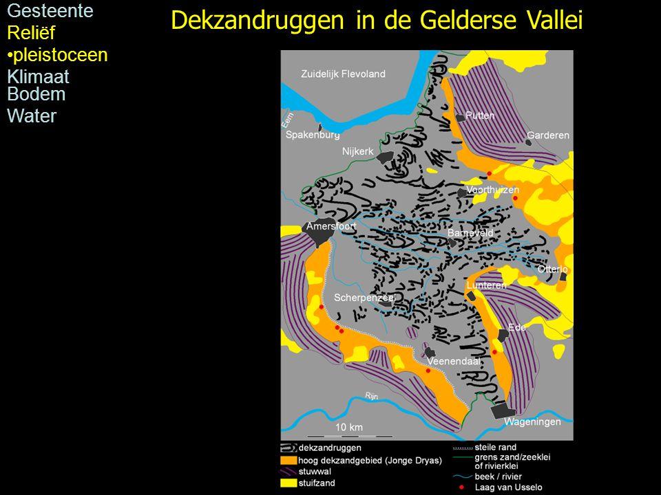 Dekzandruggen in de Gelderse Vallei Gesteente Reliëf pleistoceen Klimaat Bodem Water