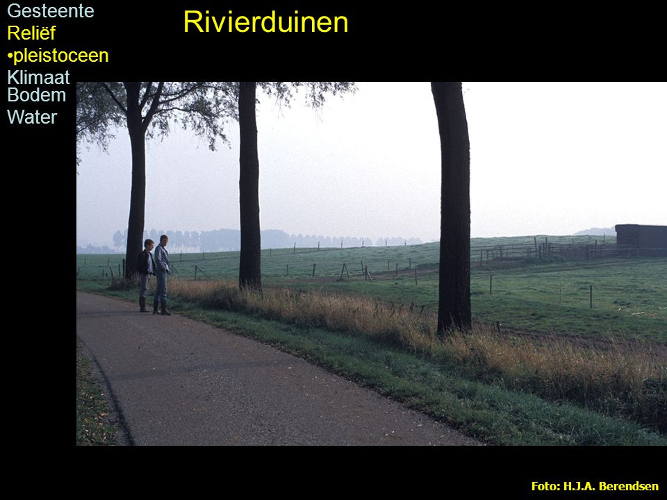 Foto: H.J.A. Berendsen Rivierduin bij Dreumel Rivierduinen Gesteente Reliëf pleistoceen Klimaat Bodem Water