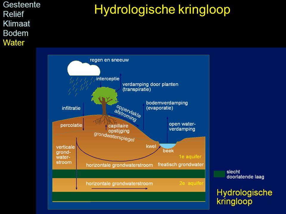 Hydrologische kringloop Gesteente Reliëf Klimaat Bodem Water