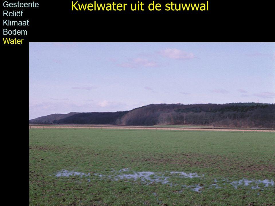 Foto: H.J.A. Berendsen Kwelwater uit de stuwwal Gesteente Reliëf Klimaat Bodem Water