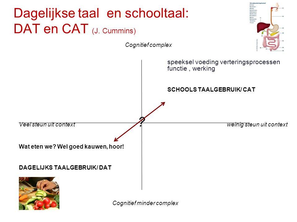 Dagelijkse taal en schooltaal: DAT en CAT (J. Cummins) speeksel voeding verteringsprocessen functie, werking SCHOOLS TAALGEBRUIK/ CAT Veel steun uit c