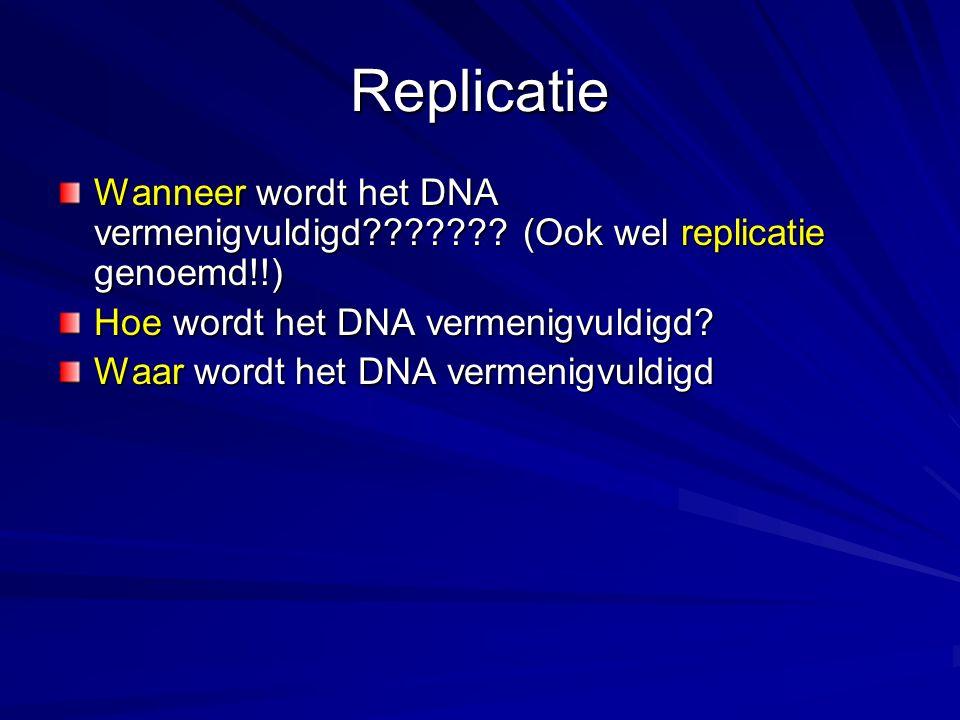 Een overzicht van de verschillende enzymen die bij de DNA synthese betrokken zijn.