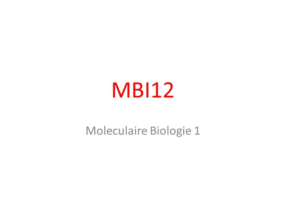 MBI12 Moleculaire Biologie 1
