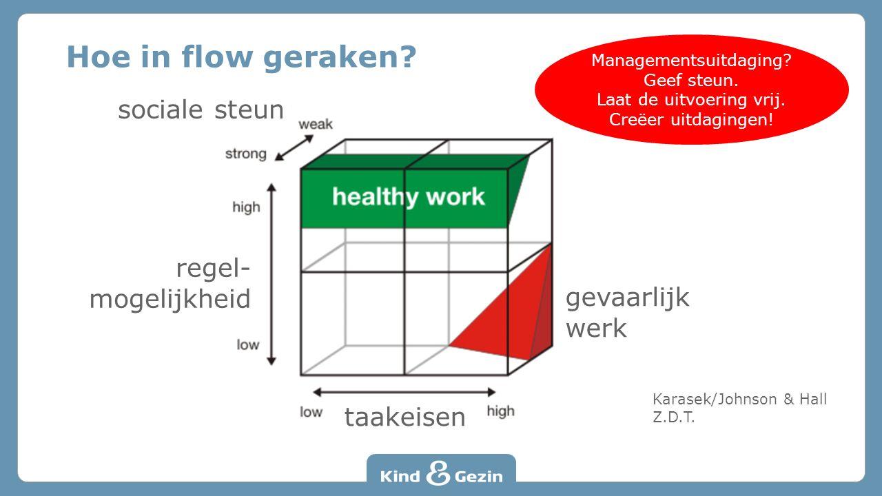 Hoe in flow geraken. Karasek/Johnson & Hall Z.D.T.