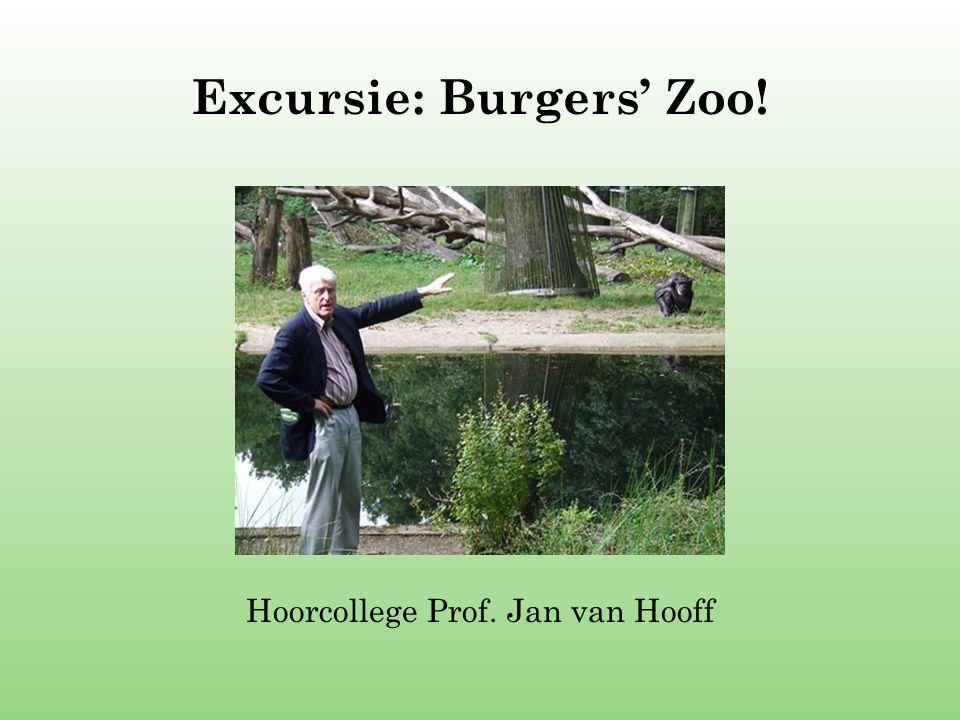 Excursie: Burgers' Zoo! Hoorcollege Prof. Jan van Hooff
