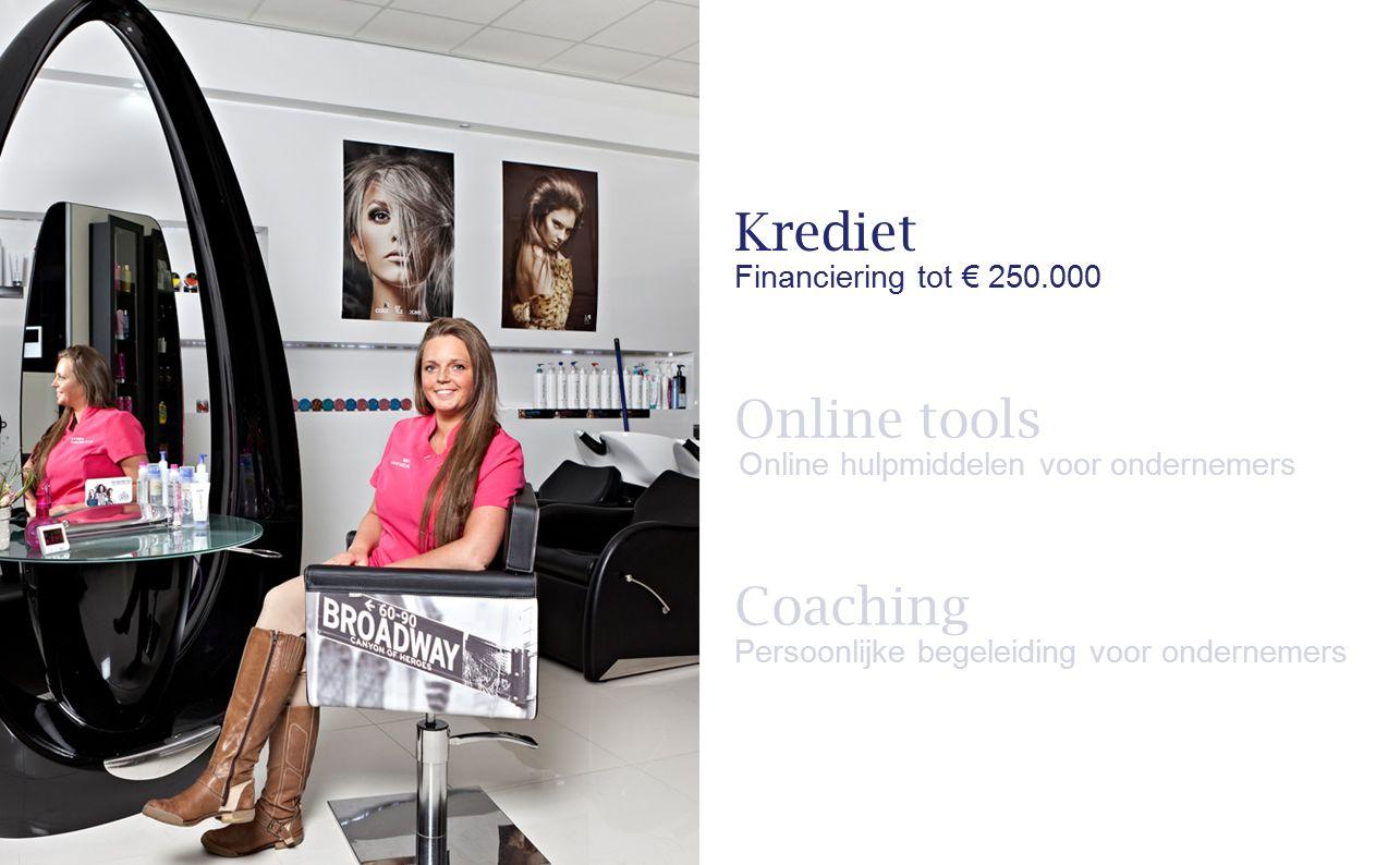 Coaching Persoonlijke begeleiding voor ondernemers Krediet Financiering tot € 250.000 Online tools Online hulpmiddelen voor ondernemers