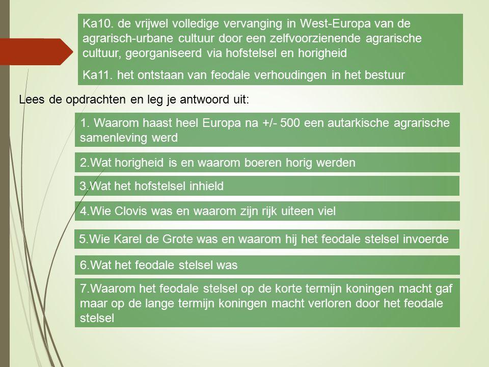 H 3 Monniken en ridders§ 3.2 Hofstelsel en horigheid Ka10. de vrijwel volledige vervanging in West-Europa van de agrarisch-urbane cultuur door een zel