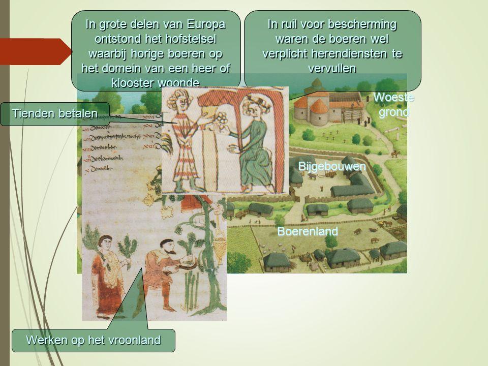 In grote delen van Europa ontstond het hofstelsel waarbij horige boeren op het domein van een heer of klooster woonde In ruil voor bescherming waren d