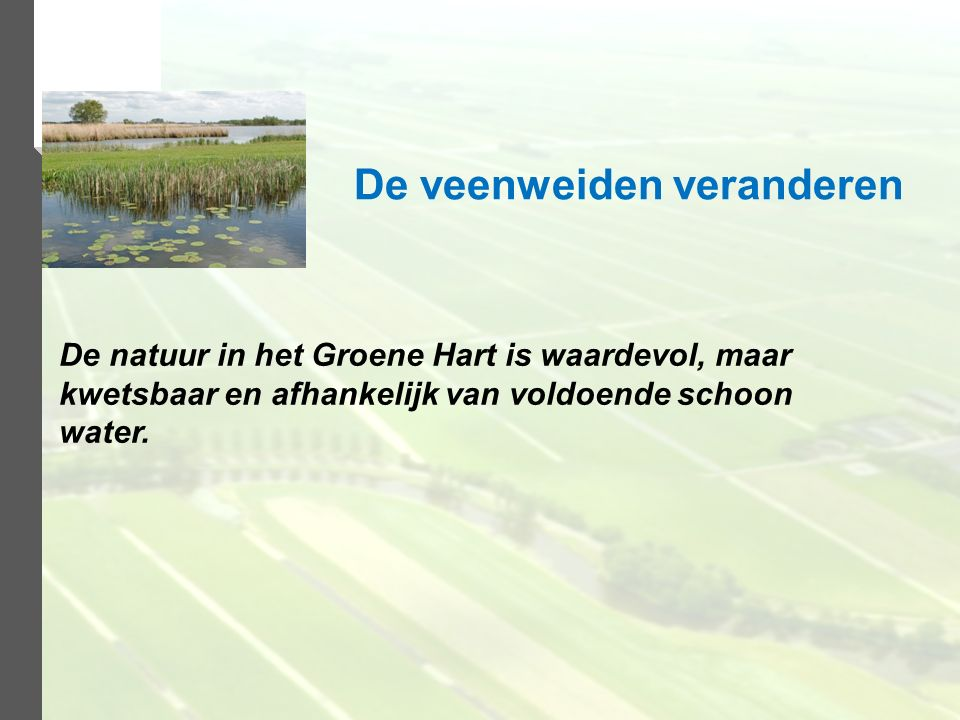 De natuur in het Groene Hart is waardevol, maar kwetsbaar en afhankelijk van voldoende schoon water. De veenweiden veranderen