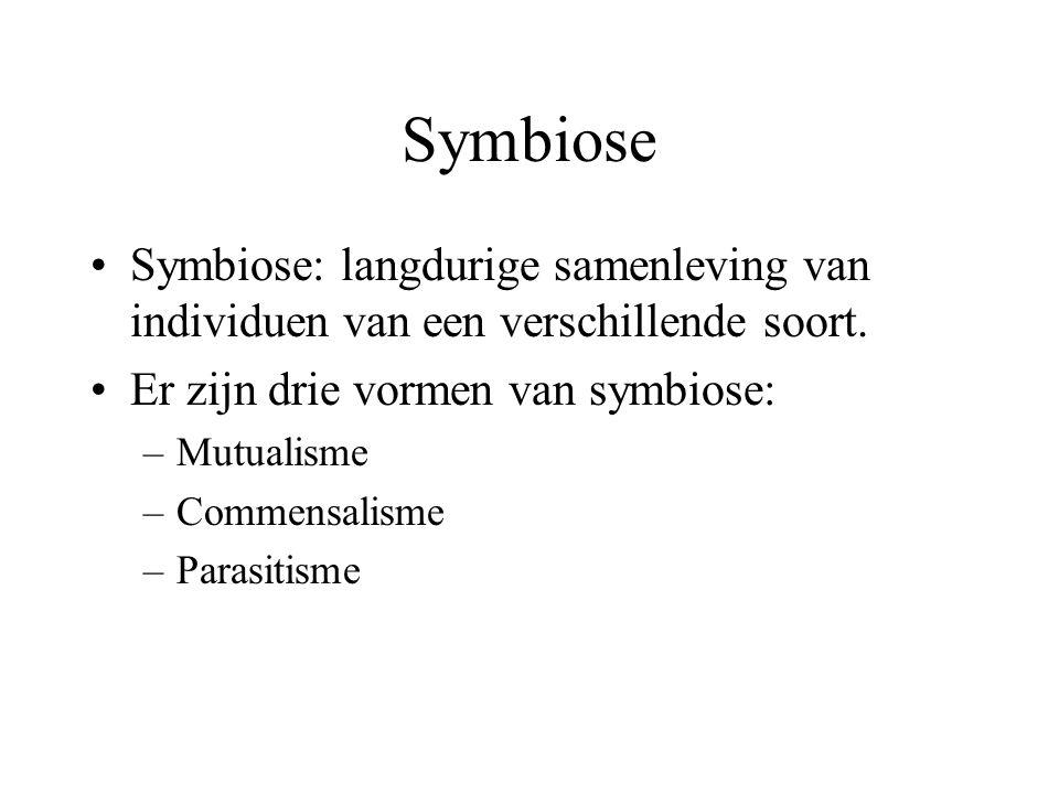 Symbiose Symbiose: langdurige samenleving van individuen van een verschillende soort.