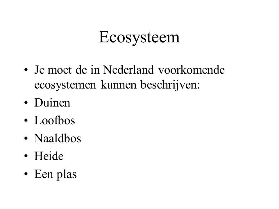 Ecosysteem Je moet de in Nederland voorkomende ecosystemen kunnen beschrijven: Duinen Loofbos Naaldbos Heide Een plas