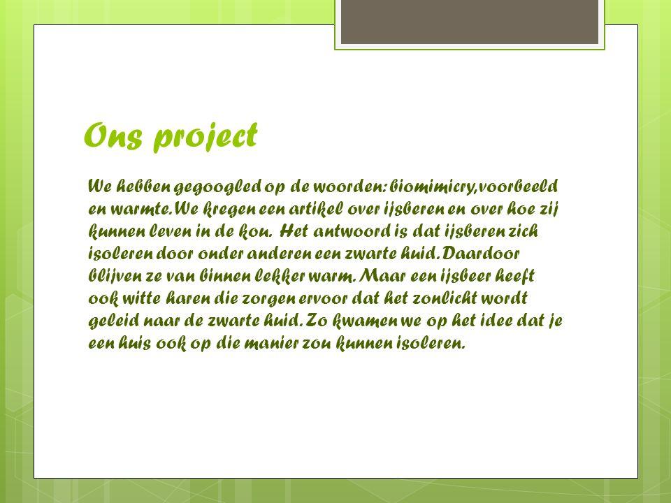 Ons project We hebben gegoogled op de woorden: biomimicry, voorbeeld en warmte. We kregen een artikel over ijsberen en over hoe zij kunnen leven in de