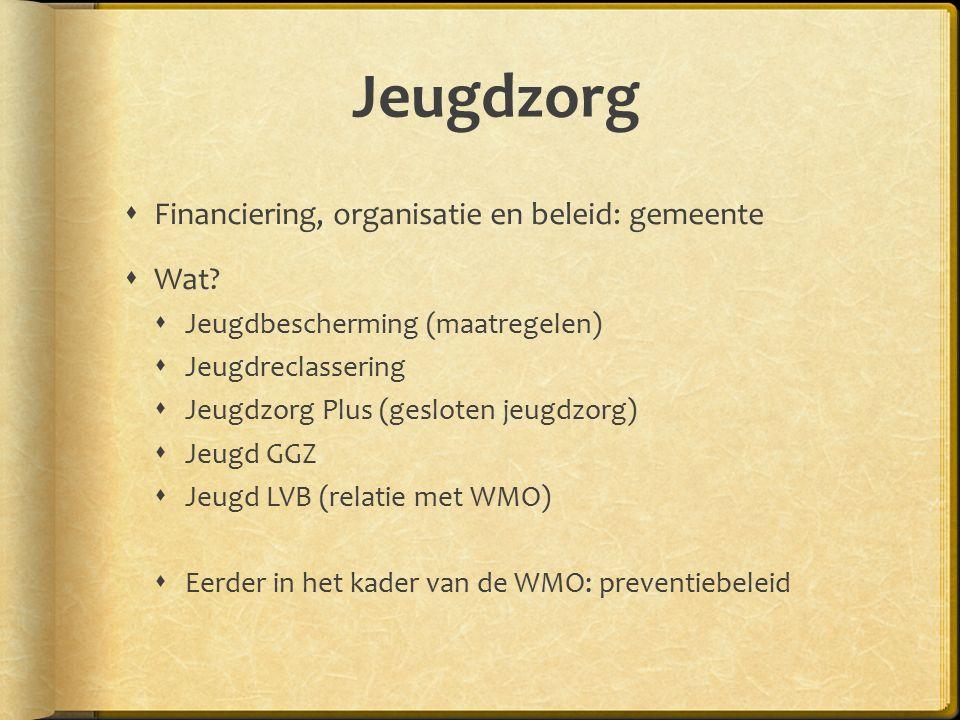 Jeugdzorg  Financiering, organisatie en beleid: gemeente  Wat.