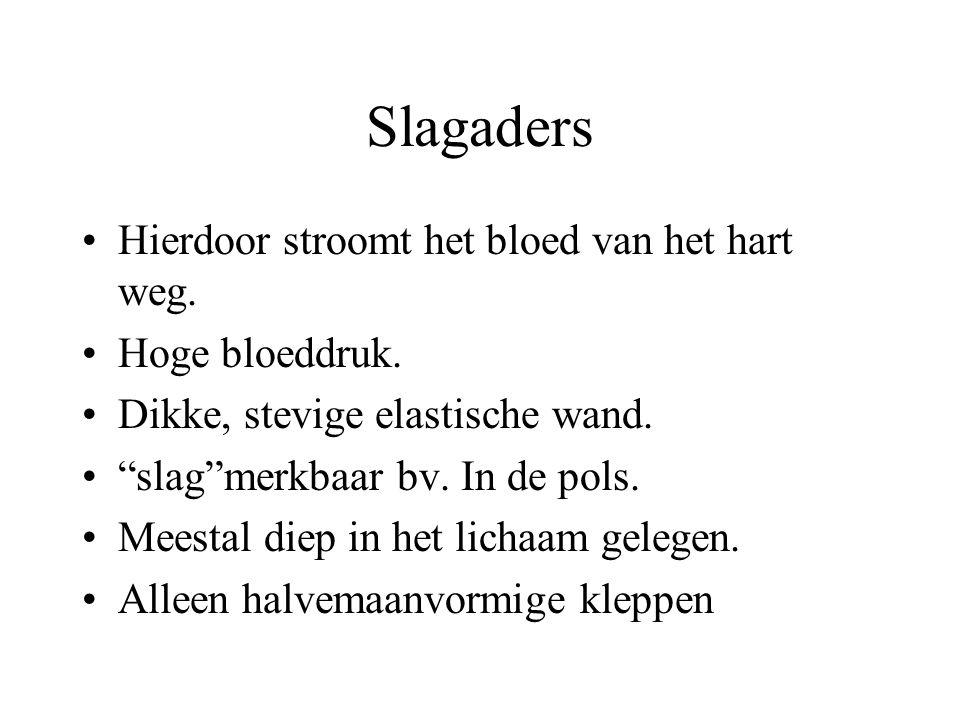 Slagaders Hierdoor stroomt het bloed van het hart weg.