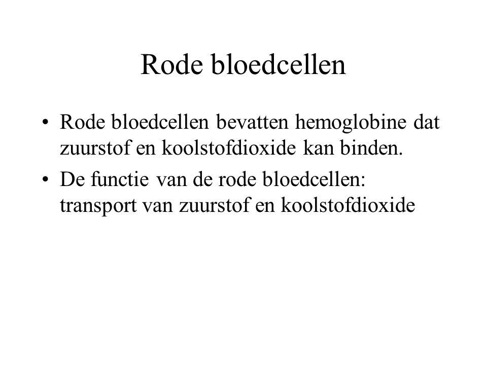 Rode bloedcellen Rode bloedcellen bevatten hemoglobine dat zuurstof en koolstofdioxide kan binden.