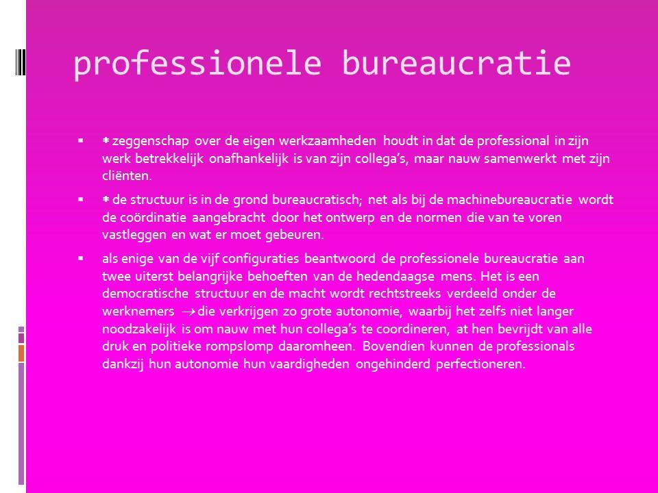 professionele bureaucratie   zeggenschap over de eigen werkzaamheden houdt in dat de professional in zijn werk betrekkelijk onafhankelijk is van zijn collega's, maar nauw samenwerkt met zijn cliënten.