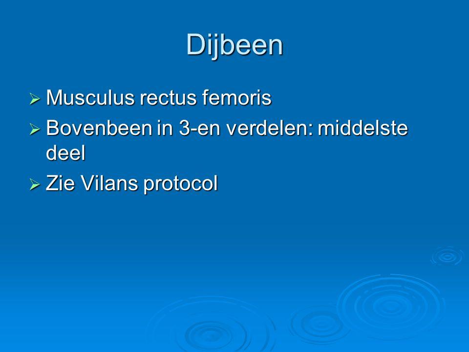 Dijbeen  Musculus rectus femoris  Bovenbeen in 3-en verdelen: middelste deel  Zie Vilans protocol
