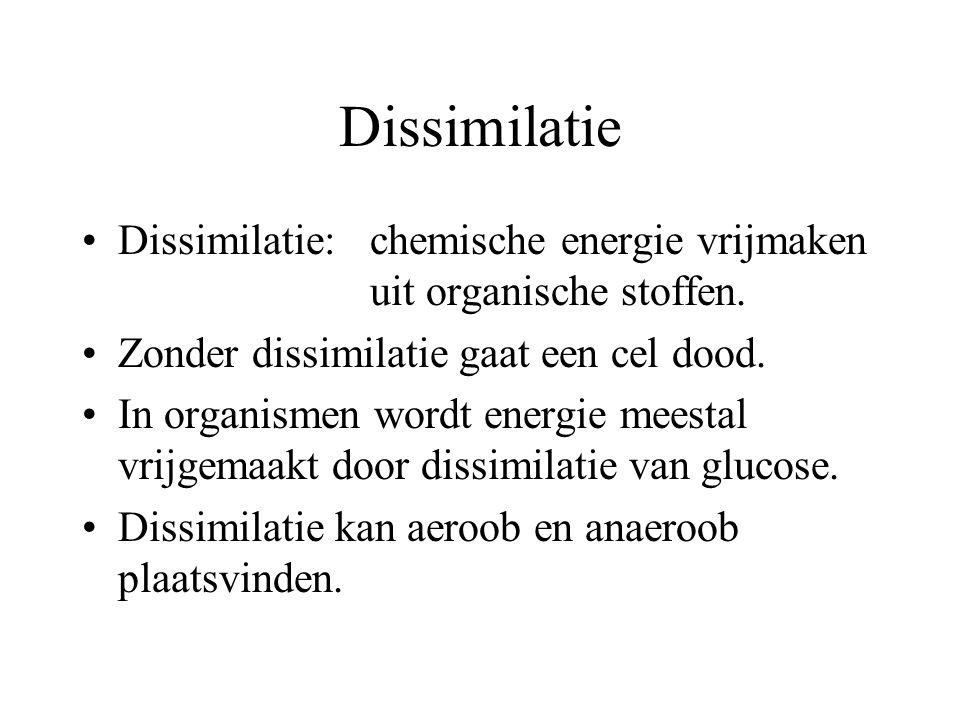 Dissimilatie Dissimilatie:chemische energie vrijmaken uit organische stoffen. Zonder dissimilatie gaat een cel dood. In organismen wordt energie meest
