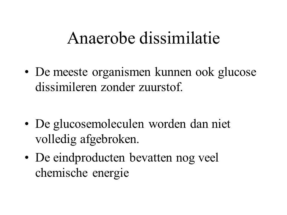 Anaerobe dissimilatie De meeste organismen kunnen ook glucose dissimileren zonder zuurstof. De glucosemoleculen worden dan niet volledig afgebroken. D