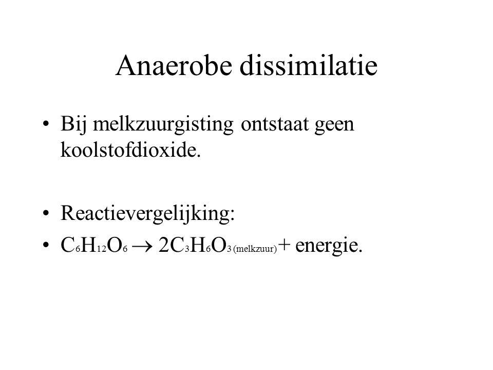 Anaerobe dissimilatie Bij melkzuurgisting ontstaat geen koolstofdioxide. Reactievergelijking: C 6 H 12 O 6  2C 3 H 6 O 3 (melkzuur) + energie.