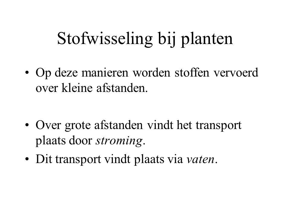 Stofwisseling bij planten Op deze manieren worden stoffen vervoerd over kleine afstanden. Over grote afstanden vindt het transport plaats door stromin