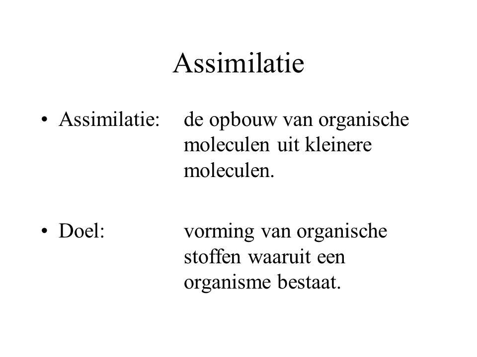 Assimilatie Assimilatie:de opbouw van organische moleculen uit kleinere moleculen. Doel:vorming van organische stoffen waaruit een organisme bestaat.
