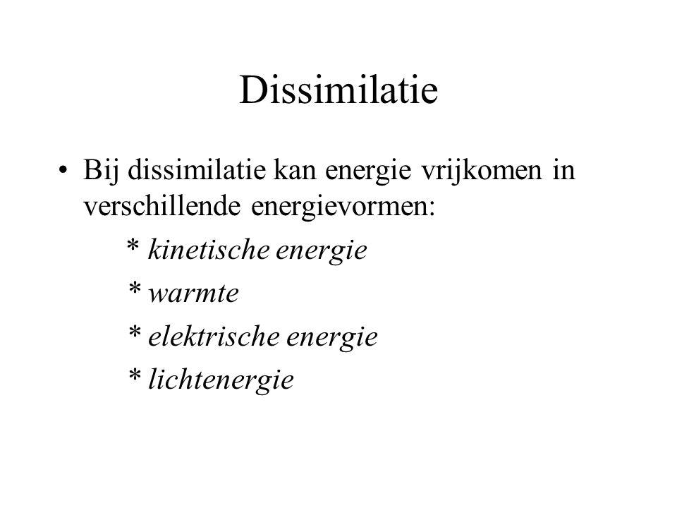 Dissimilatie Bij dissimilatie kan energie vrijkomen in verschillende energievormen: * kinetische energie * warmte * elektrische energie * lichtenergie